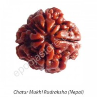 Chatur Mukhi Rudraksha With Silver Capping