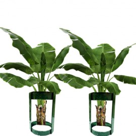 Stand For Banana Plant For Pooja (1Pair)