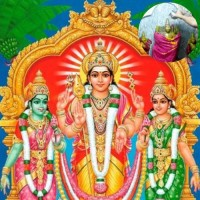 Sri Valli Devasena Sametha Subrahmanya Swamy Abhishekam (6 Tuesdays)